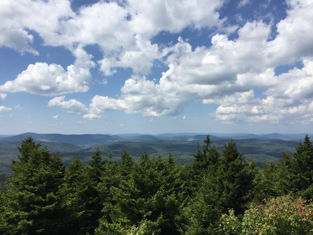 Spruce Knob View